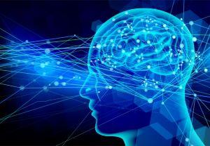 脳神経伝達イメージ